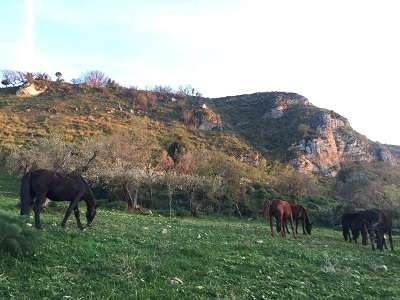 Sicilia - Prizzi - cosa visitare - vacanza esperienziale